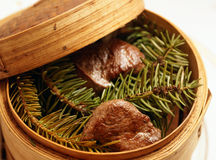 Venison steaks smoked with pine branches Royalty Free Stock Photo