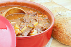 Venison Stew Royalty Free Stock Photos
