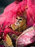 Venitian Carnival in Paris Stock Photos