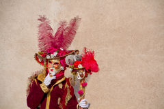 Venitian karneval Fotografering för Bildbyråer