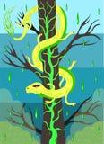 Venomous snake on an acid tree. The yellow venomous snake sits on a tree Stock Image