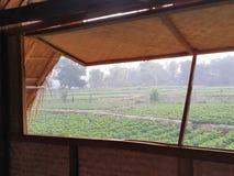 venster aan het landbouwbedrijf Stock Foto