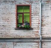 Venster + Bloemen Royalty-vrije Stock Afbeeldingen