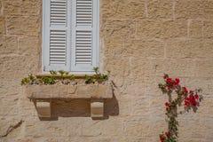 venster en bloemen Stock Foto's