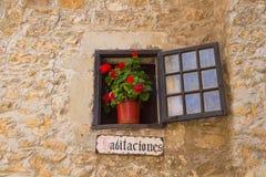 Venster en rode bloemen stock foto's