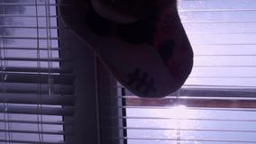 Venster jaloezie Een stuk speelgoed De sok van Kerstmis Ochtend Glans in het venster van het water stock footage