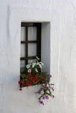 Venster met bloemen Stock Foto