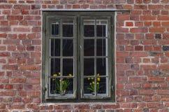 Venster met bloemen Royalty-vrije Stock Afbeeldingen