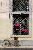 Venster met bloempotten die wordt verfraaid royalty-vrije stock foto's
