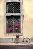 Venster met bloempotten die wordt verfraaid stock foto's