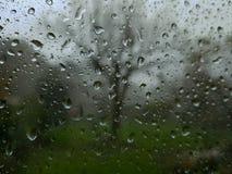 Venster met regen stock foto's