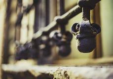 Venster met rooster Luca Italië stock afbeeldingen