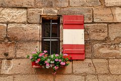 Venster met verse bloem in Nuremberg wordt verfraaid dat Stock Afbeelding