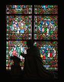 Venster van Notre Dame Royalty-vrije Stock Fotografie