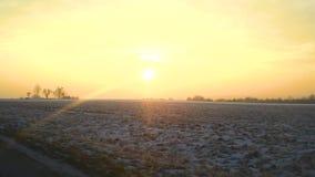 Venster zonovergoten mening van landschap van een Auto, Bus, Trein, de drijfgebieden van het trogplatteland onder sneeuwbomen stock videobeelden