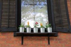 Vensterbank van het huis van het land met vijf kleine potten van bloemen voor decoratie Royalty-vrije Stock Afbeeldingen