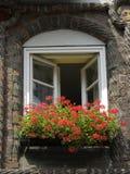 Vensterdoos met ooievaarsbekbloemen stock afbeelding
