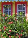 Vensters die tuin onder ogen zien Stock Afbeeldingen