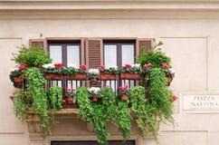 Vensters met bloemen in Piazza Navona Stock Afbeelding