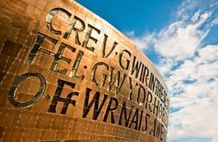 Vensters van het Centrum van het Millennium van Wales royalty-vrije stock afbeelding