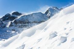 Vent d'hiver photographie stock libre de droits