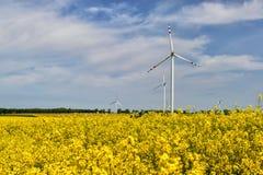 vent de turbines d'été d'horizontal Photo libre de droits