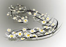 Vent des fleurs illustration libre de droits