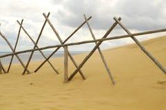 Vent et dune de Curonian photographie stock