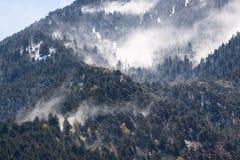 Vent et neige Photographie stock libre de droits