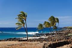 Vent orageux sur la côte du ` s d'Hawaï image libre de droits