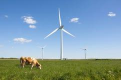 vent vert de turbine d'énergie propre Image libre de droits
