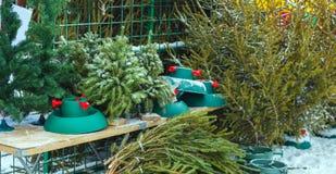 Venta al aire libre de los árboles de navidad de Frsh Fotos de archivo libres de regalías