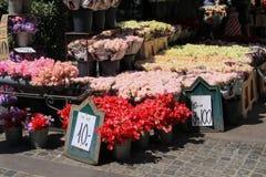 Venta de flores en Copenhague Imagenes de archivo