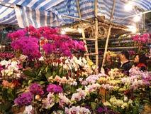 Venta de las flores durante Año Nuevo lunar chino Fotos de archivo