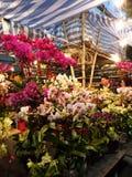 Venta de las flores durante Año Nuevo lunar chino Imágenes de archivo libres de regalías