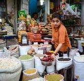 Venta de las frutas nuts y secadas en un bazar en la India Foto de archivo libre de regalías