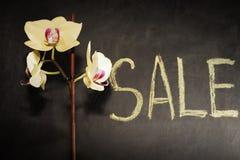 Venta de orquídeas compra Foto de archivo libre de regalías