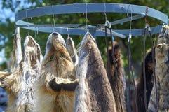 Venta de pieles del zorro en el mercado Imagen de archivo libre de regalías