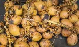 Venta de rey Coconuts Display For Imágenes de archivo libres de regalías
