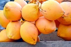 Venta de rey Coconuts Display For en la pequeña calle en Malwana imagen de archivo libre de regalías