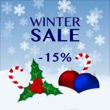 Venta del invierno stock de ilustración