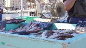 Venta del pescadero sus fishs en el puerto viejo de Marsella en Francia, cierre encima de 4K almacen de video