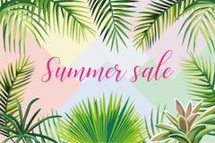 Venta del verano del lema de hojas tropicales Fotos de archivo libres de regalías