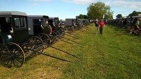 Venta y subasta del fango de Amish almacen de metraje de vídeo