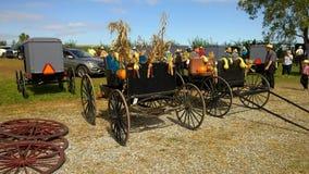 Venta y subasta del fango de Amish almacen de video