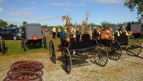 Venta y subasta del fango de Amish metrajes