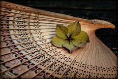Ventaglio di legno Fotografie Stock Libere da Diritti