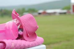 Ventaja del cáncer de pecho foto de archivo libre de regalías