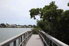 Ventaja del puente de madera a la selva Rastros de madera boardwalk Un muelle sobre el agua en las rocas indias vara la reserva n imagen de archivo