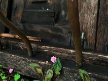 Ventana abandonada Fotografía de archivo libre de regalías